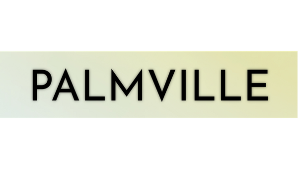 I Wrote A Book! Introducing: Palmville
